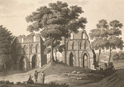 Roche Abbey Yorkshire 67-c